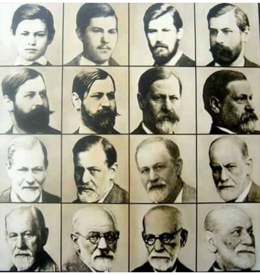 Freud ve Psikanalitik Teknik Üzerine Makaleler----